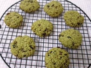 cran-pecan-oat-cookies-1