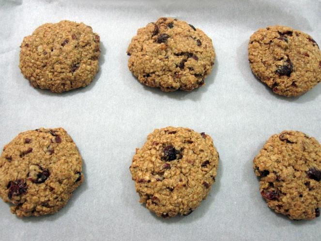 cran-pecan-oat-cookies-2